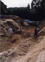 空堀の発掘調査(向栫城)