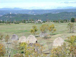 復元集落の写真
