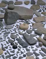 出土した石器
