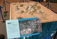 展示風景2